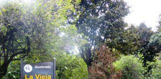 Hiking Bogotá, Quebrada Las Delicias, Quebrada La Vieja, Bogotá´s Mountain trails