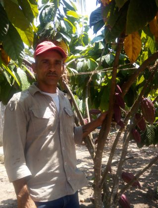 Colombia cacao, Colombia coca