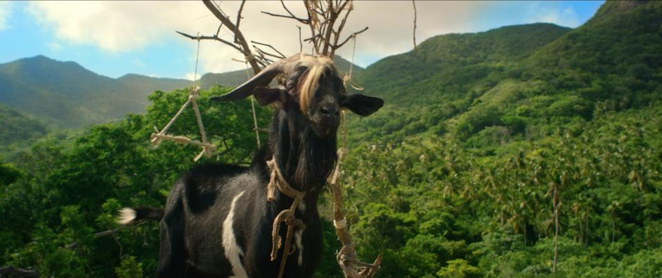 Dia de la Cabra