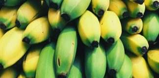 Australian scientists have squashed the threat of banana extinction in Colombia