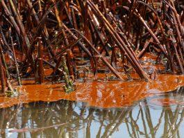 oil spill Santander