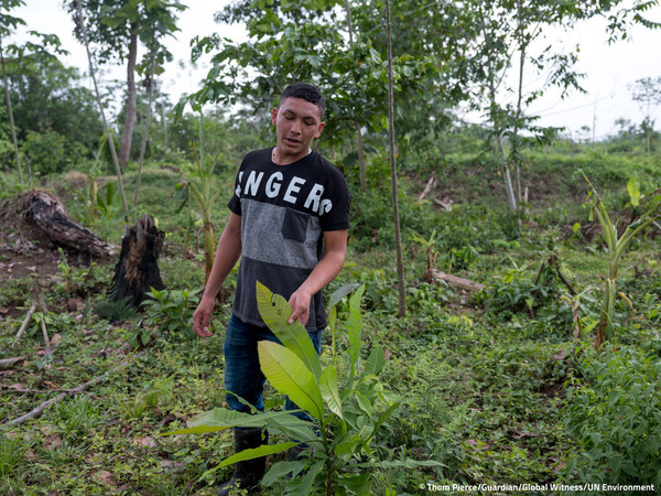 global witness, environmental activist murders