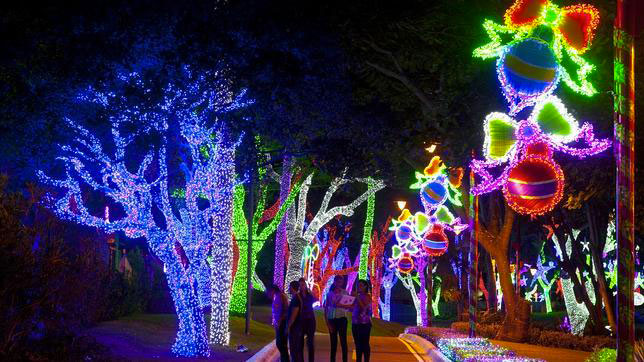 Christmas celebrations and lights in Colombia will be different from previous years.